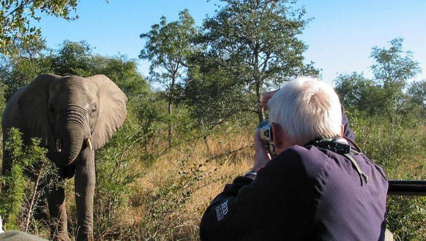 Safari in South Africa & Beach Life in Mauritius